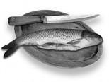 fish danger