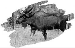 hunterseason21
