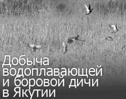 huntersezon2020